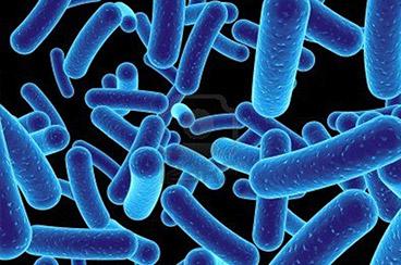 Ultra Violet Sterilisation uses UV light to sterilise drinking water